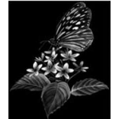 Цветок 10